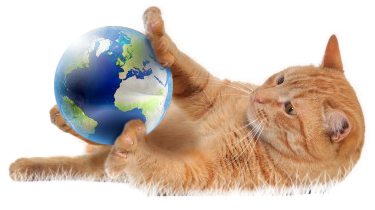 Image result for cat with globe